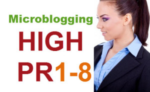 Top 20 High PR Microblogging Sites List of 2014