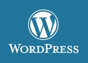 drive traffic to new wordpress blog