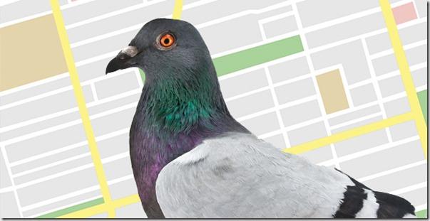 google pigeon update algo